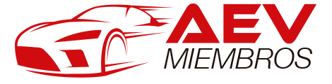 Automotriz En Video Retina Logo